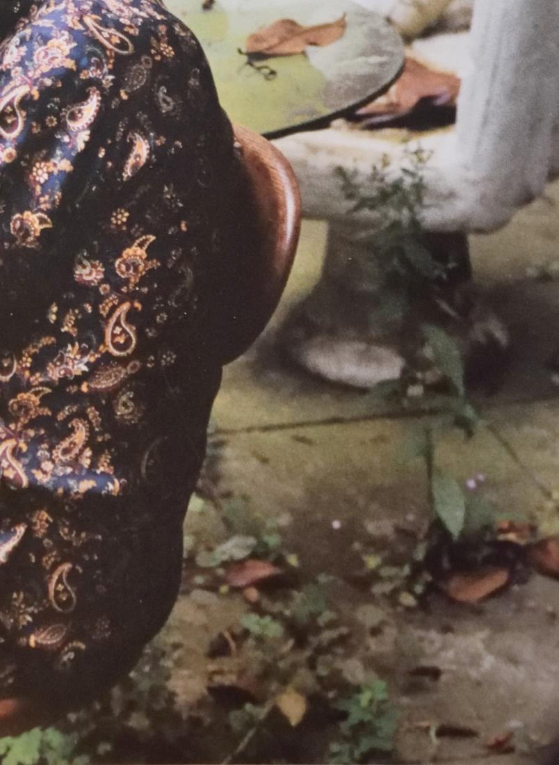 Wolfgang Tillmans, Feuilles de Magnolia et motif cachemire : portrait de Peter saville, 2002