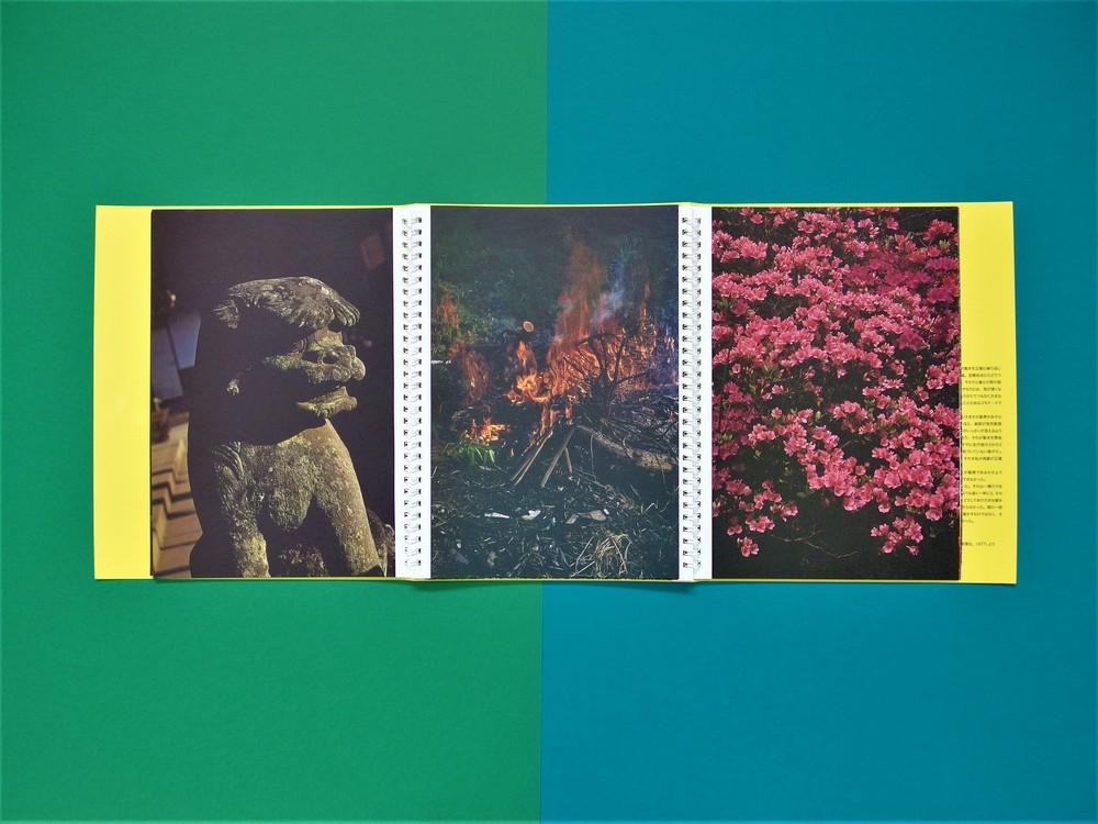 Nakahira Takuma, Gecko, San Francisco, Little Big Man, 2013