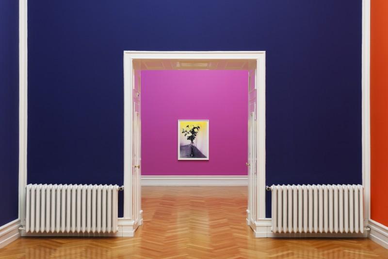 Exposition de Shirana Shahbazi, Monstera, à la Kunsthalle de Berne, 2014