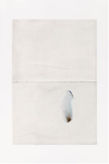Jean-Charles de Quillacq Le chien infini 2, 2019 Acetone on book page 29,7 x 42 cm unique photo : Aurélien Mole http://www.marcellealix.com/artistes/oeuvres/1886/jean-charles-de-quillacq