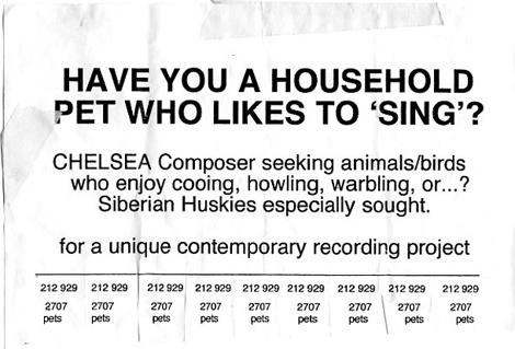 singing_pets
